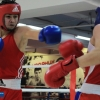 udarnik_boxing_club_bokserskii_open_ring_20181020 (22)