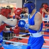 boxing_club_udarnik_7_legends_20190202 (1)