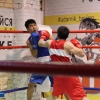 boxing_club_bokserskii_udarnik_open_ring_otkritii_20180120 (11)