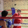 boxing_club_bokserskii_udarnik_open_ring_otkritii_20180120 (12)