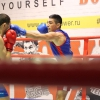 boxing_club_bokserskii_udarnik_open_ring_otkritii_20180120 (15)
