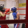 boxing_club_bokserskii_udarnik_open_ring_otkritii_20180120 (2)