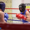 boxing_club_bokserskii_udarnik_open_ring_otkritii_20180120 (22)