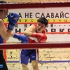 boxing_club_bokserskii_udarnik_open_ring_otkritii_20180120 (29)