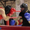 boxing_club_bokserskii_udarnik_open_ring_otkritii_20180120 (33)