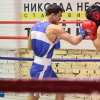 boxing_club_bokserskii_udarnik_open_ring_otkritii_20180120 (37)