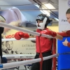 udarnik_boxing_club_bokserskii_open_ring_20180929 (6)